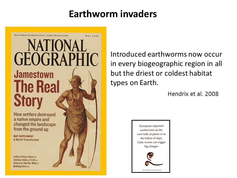 Earthworm invaders Introduced earthworms now occur in every biogeographic region in all but the driest or coldest habitat types on Earth.