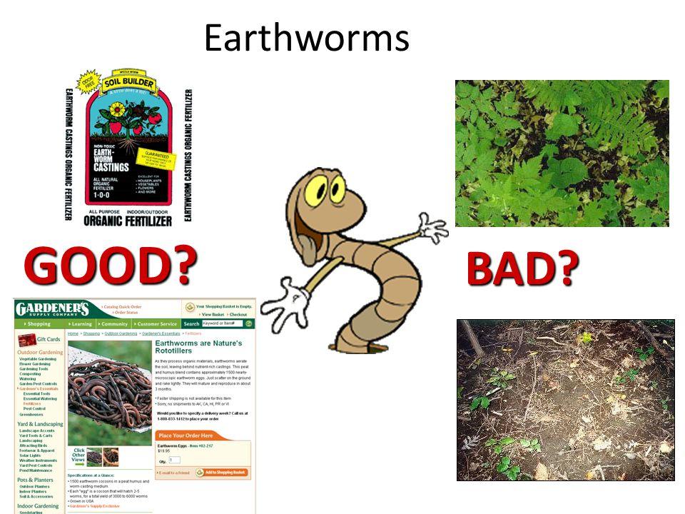 Earthworms GOOD BAD