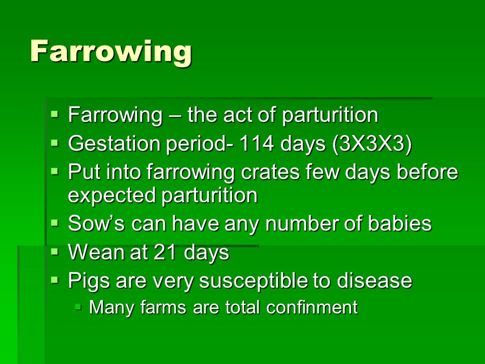 Farrowing Farrowing – the act of parturition
