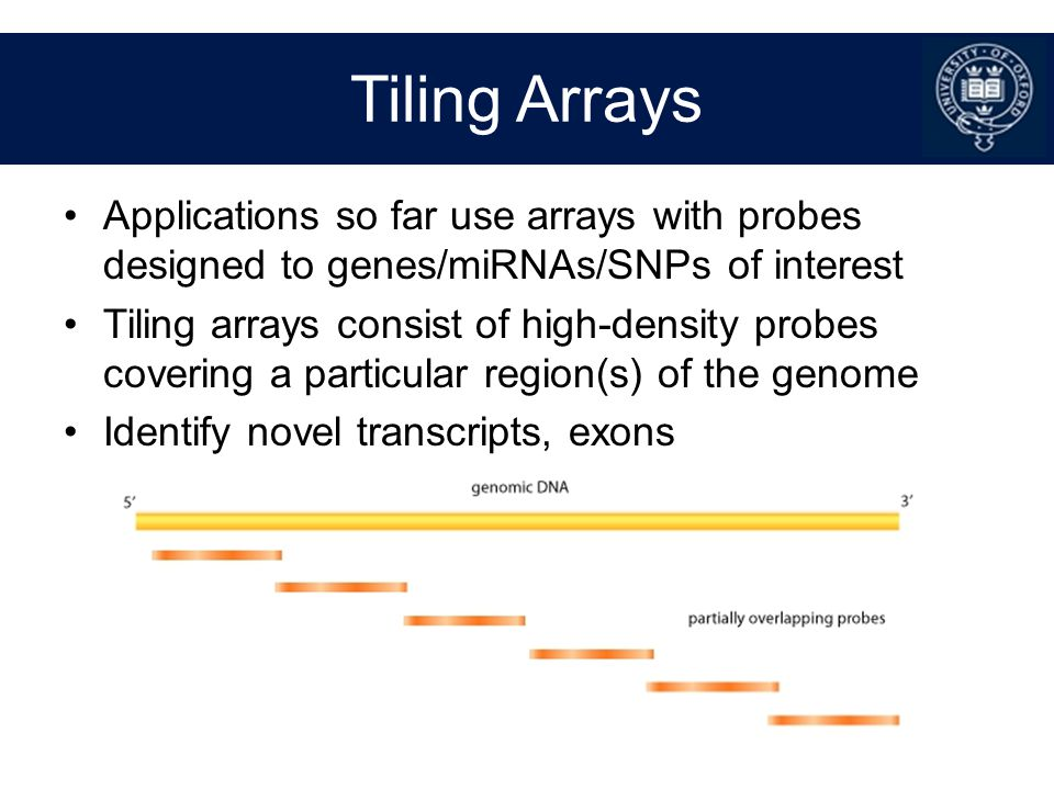 Tiling Arrays Applications so far use arrays with probes designed to genes/miRNAs/SNPs of interest.