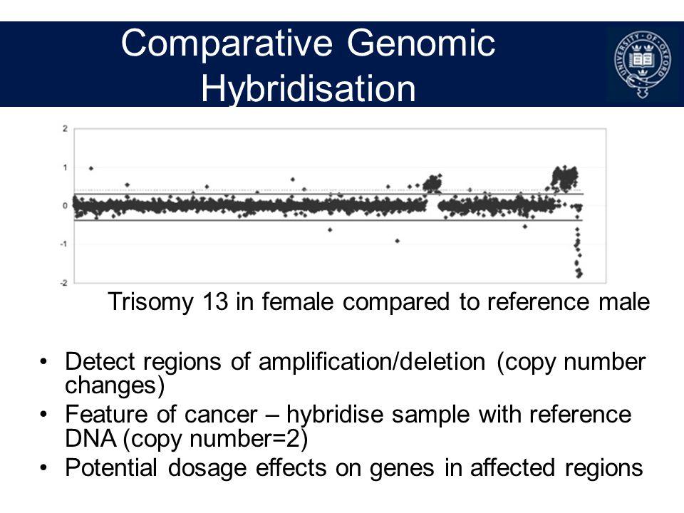 Comparative Genomic Hybridisation