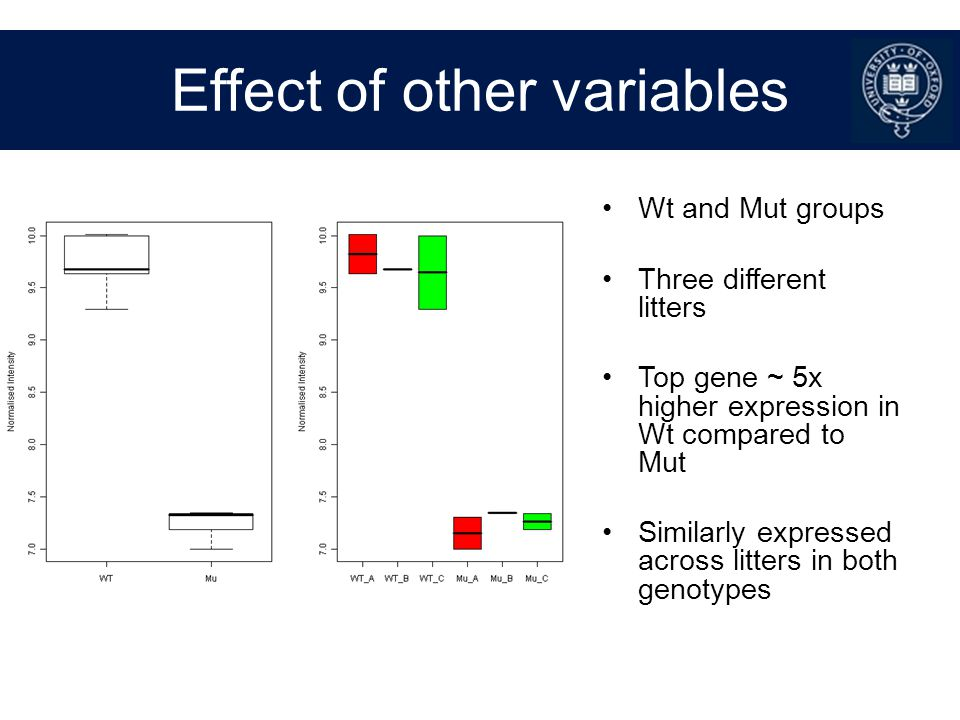 Effect of other variables