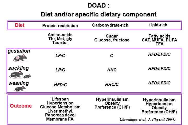 DOAD : Diet and/or specific dietary component