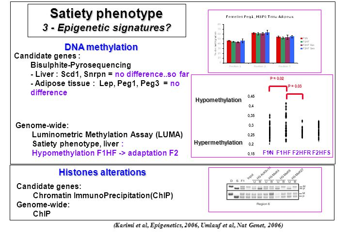 3 - Epigenetic signatures