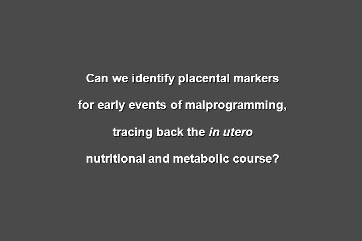 Can we identify placental markers for early events of malprogramming,
