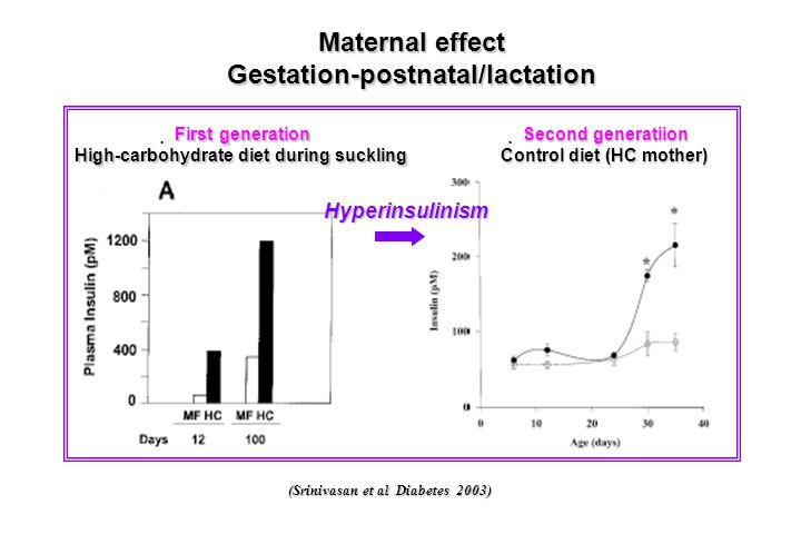 Gestation-postnatal/lactation