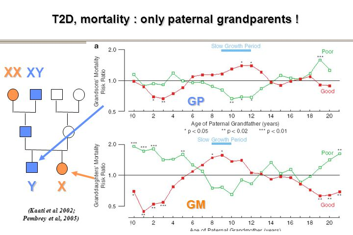 T2D, mortality : only paternal grandparents !