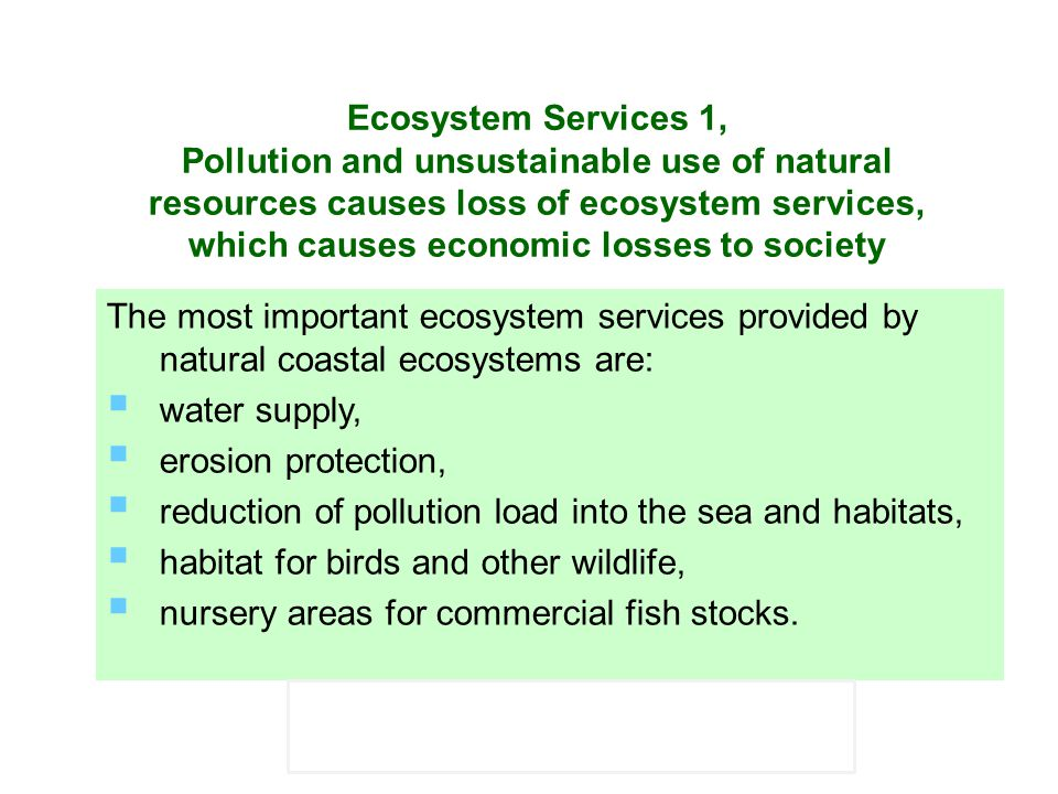 Ecosystem Services 1, Pollution and unsustainable use of natural resources causes loss of ecosystem services, which causes economic losses to society