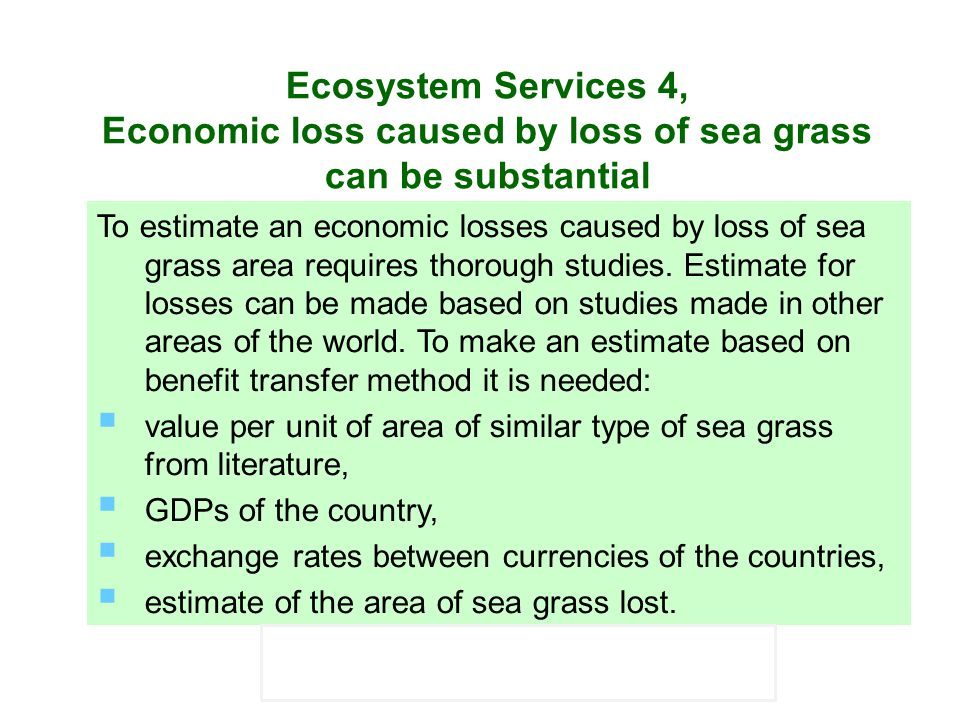 Ecosystem Services 4, Economic loss caused by loss of sea grass can be substantial
