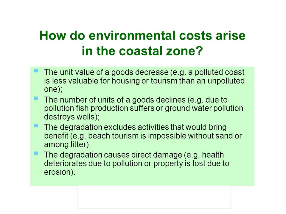 How do environmental costs arise in the coastal zone