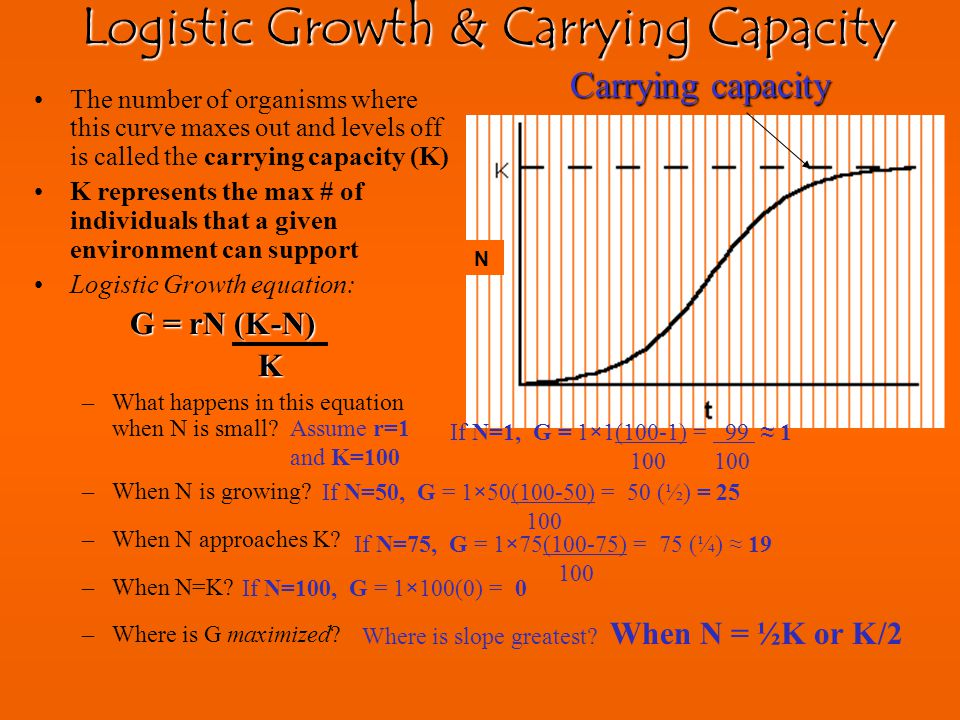 Logistic Growth & Carrying Capacity