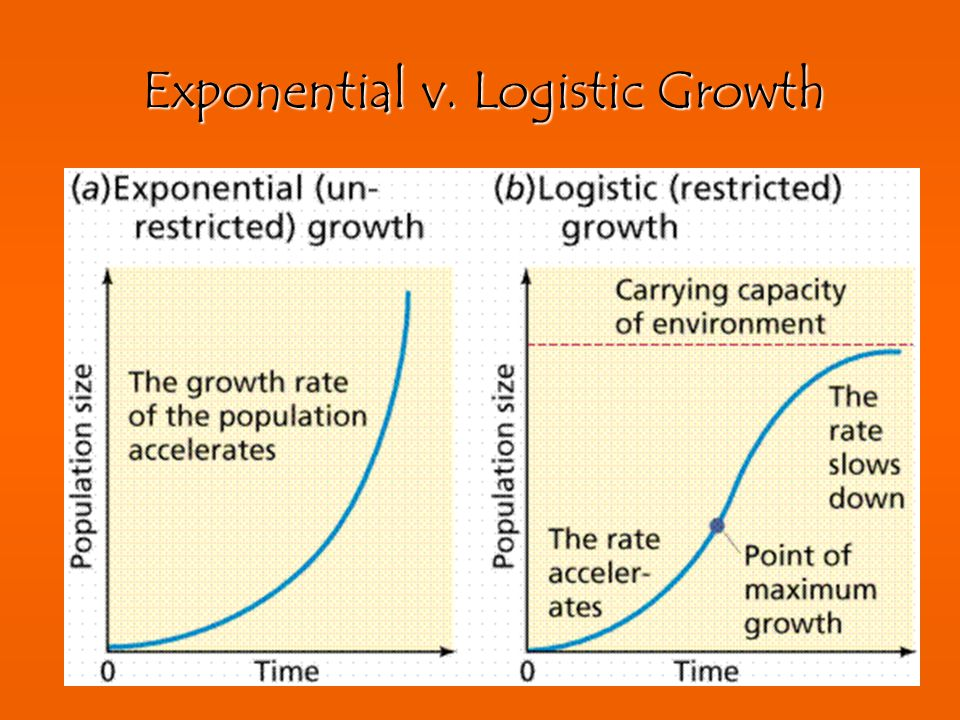 Exponential v. Logistic Growth