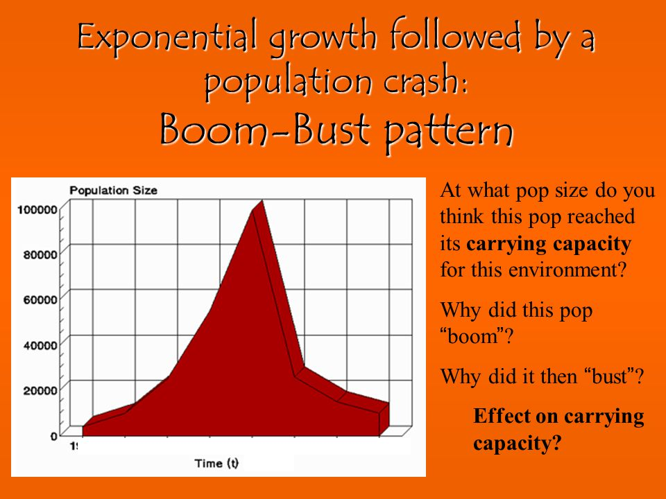 Exponential growth followed by a population crash: Boom-Bust pattern