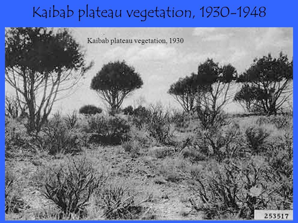 Kaibab plateau vegetation, 1930-1948