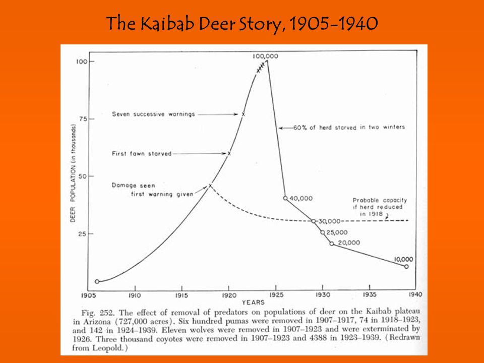 The Kaibab Deer Story, 1905-1940