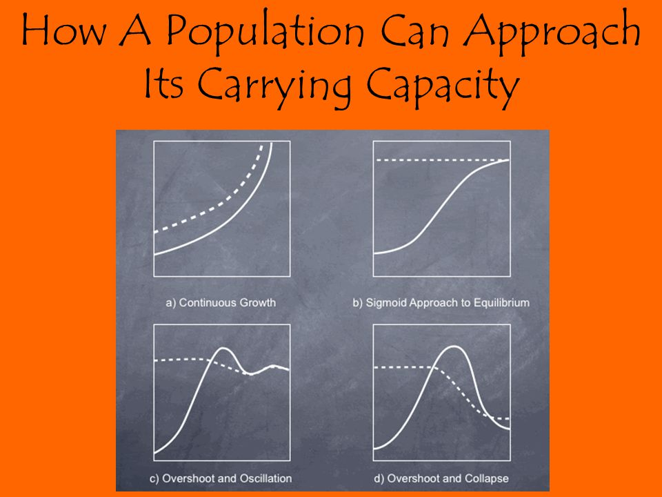 How A Population Can Approach Its Carrying Capacity