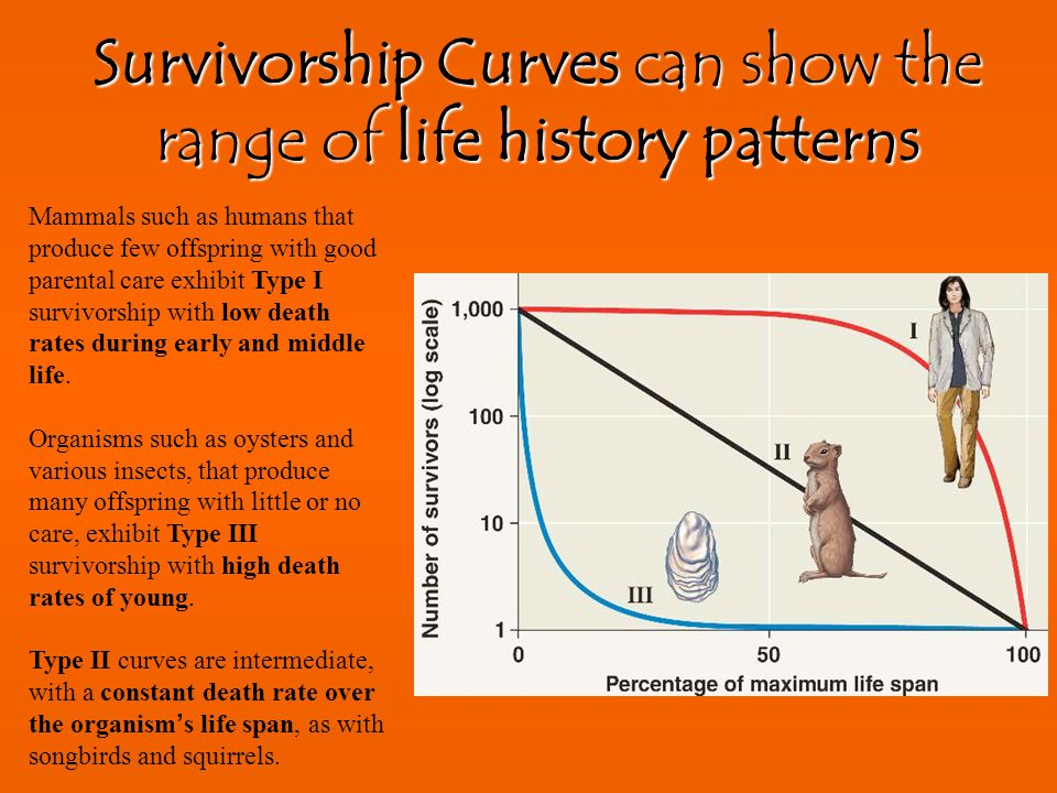 Survivorship Curves can show the range of life history patterns