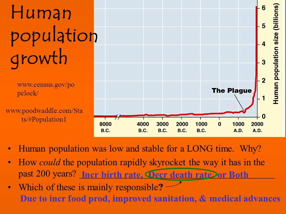 the study of population growth of
