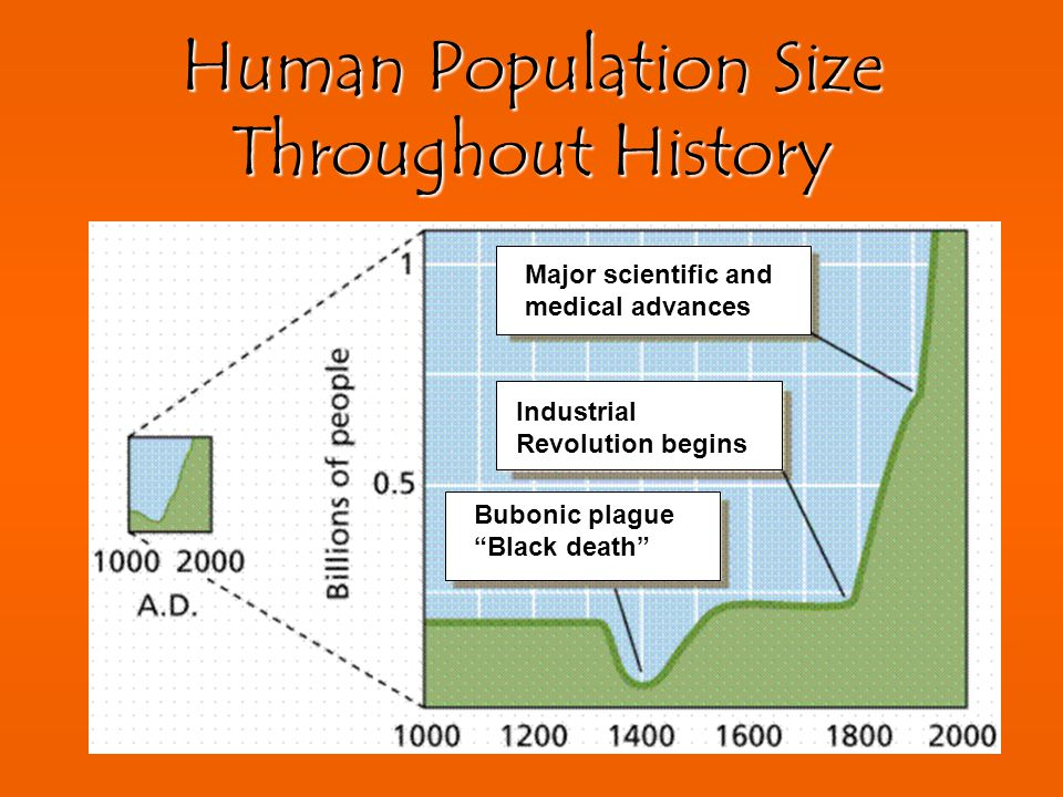 Human Population Size Throughout History