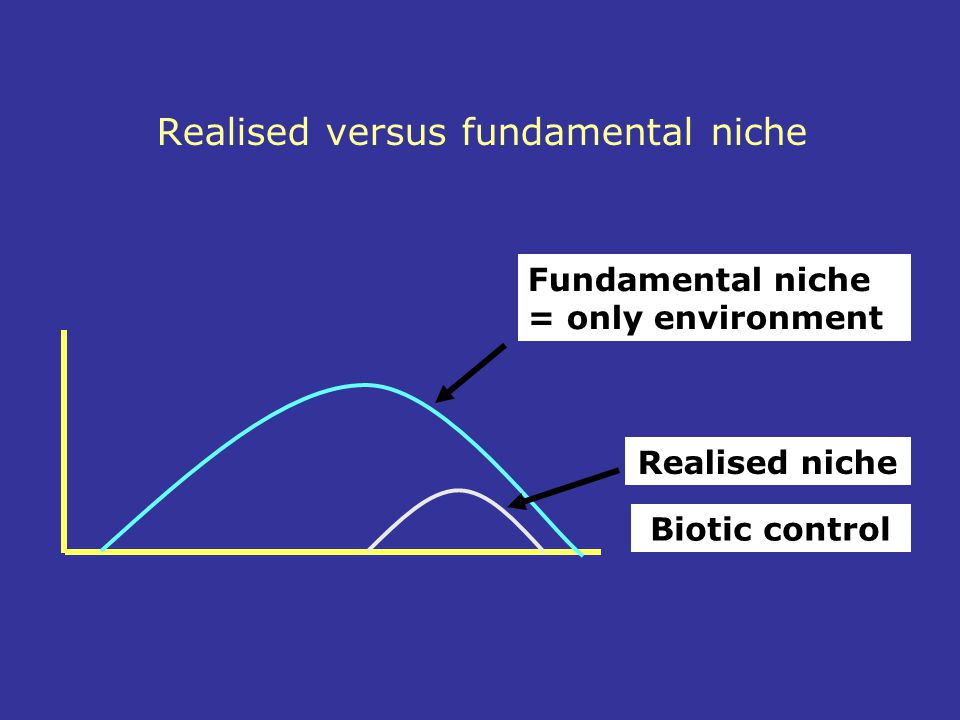 Realised versus fundamental niche