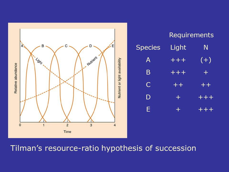Tilman's resource-ratio hypothesis of succession