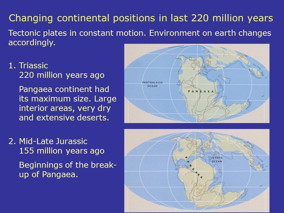 Changing continental positions in last 220 million years