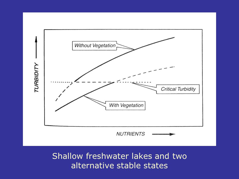 Shallow freshwater lakes and two alternative stable states