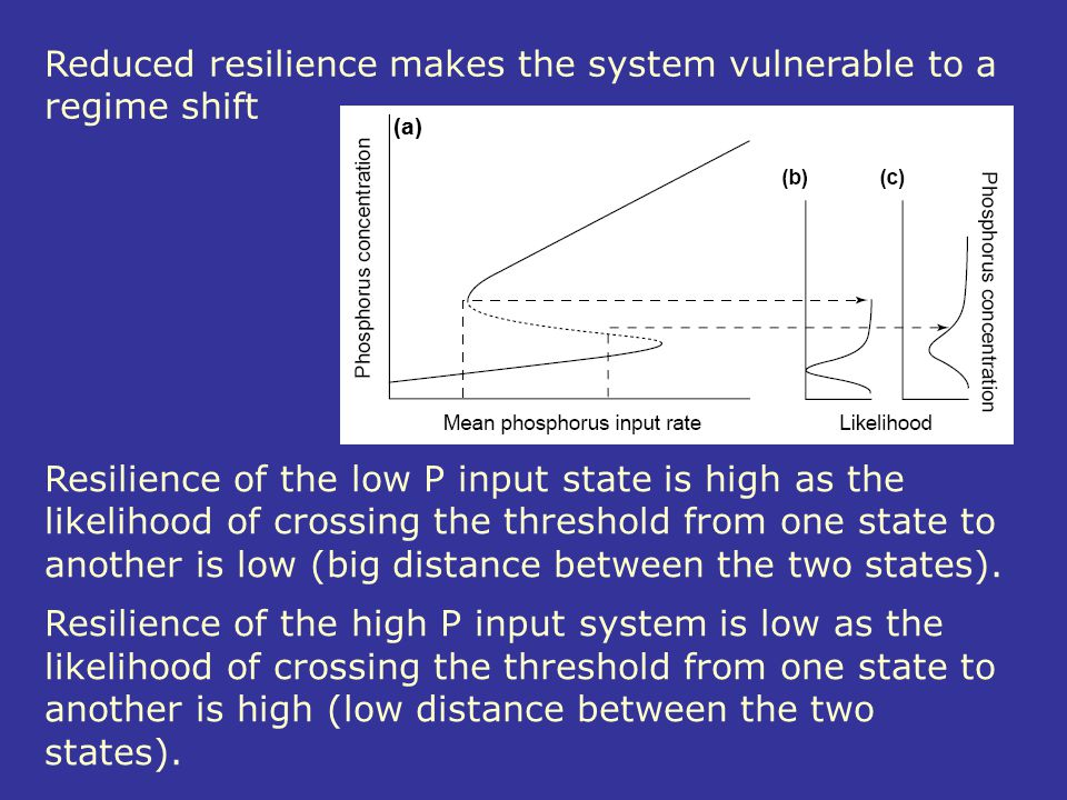 Reduced resilience makes the system vulnerable to a regime shift