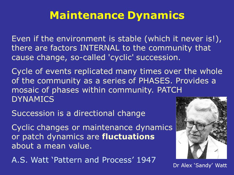 Maintenance Dynamics