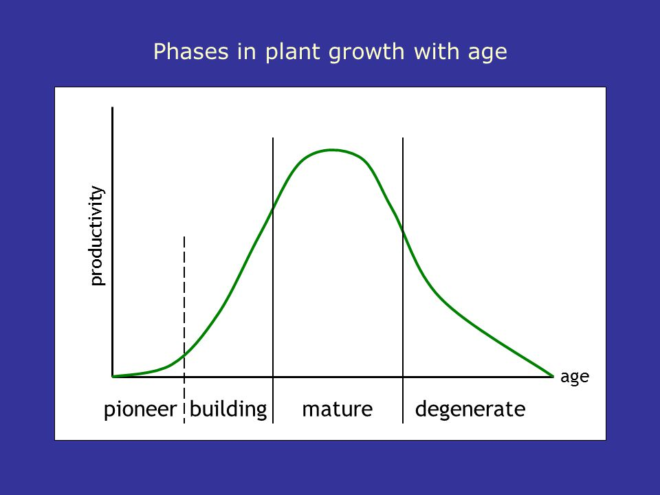 Phases in plant growth with age