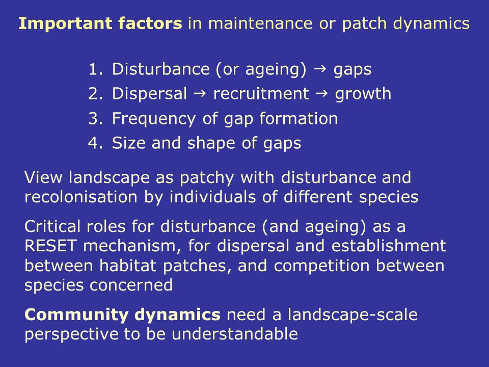 Important factors in maintenance or patch dynamics