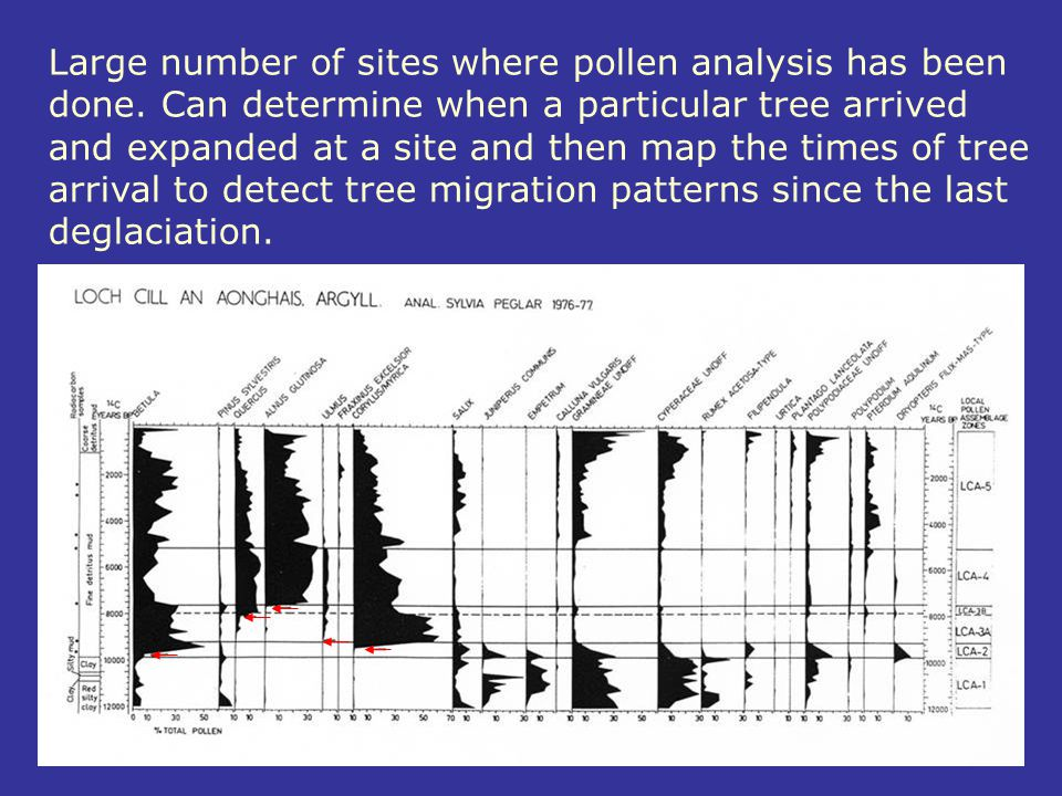 Large number of sites where pollen analysis has been done