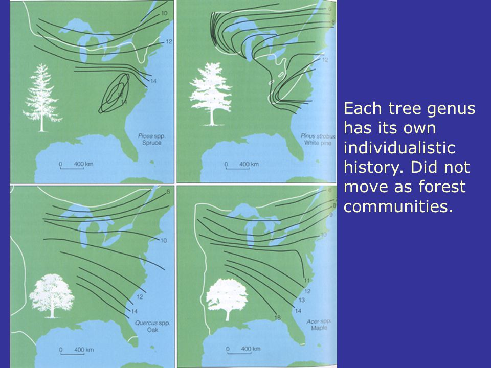 Each tree genus has its own individualistic history