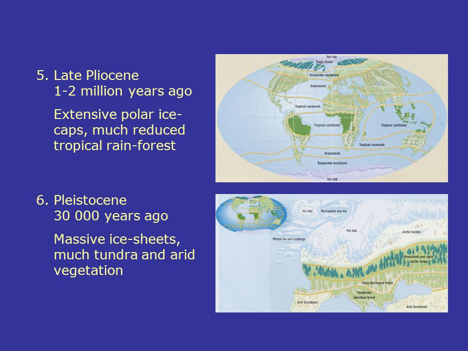 5. Late Pliocene 1-2 million years ago