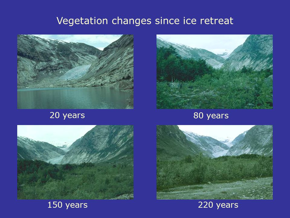 Vegetation changes since ice retreat