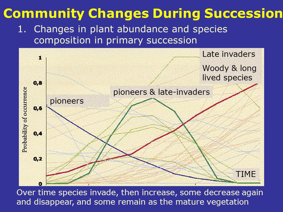Community Changes During Succession