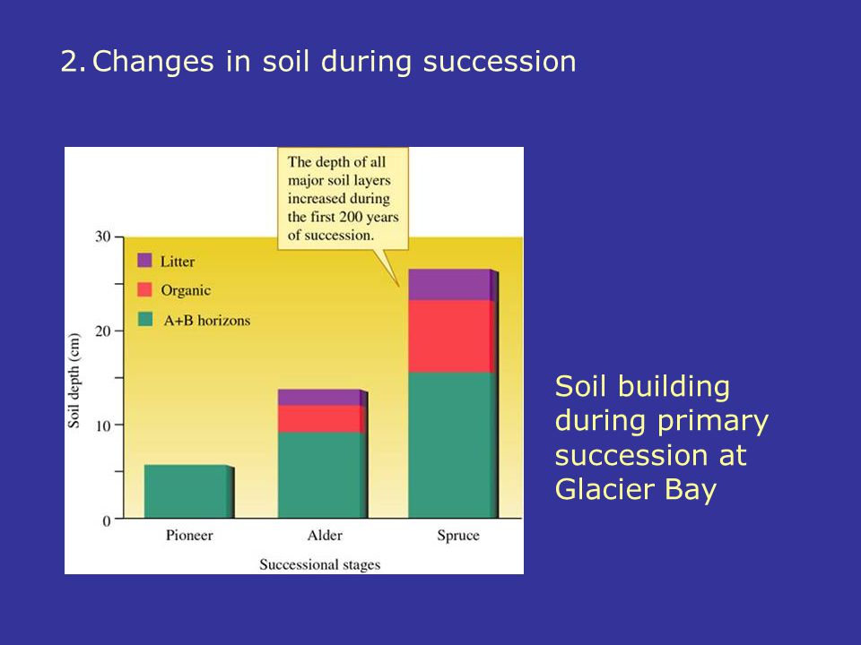2. Changes in soil during succession