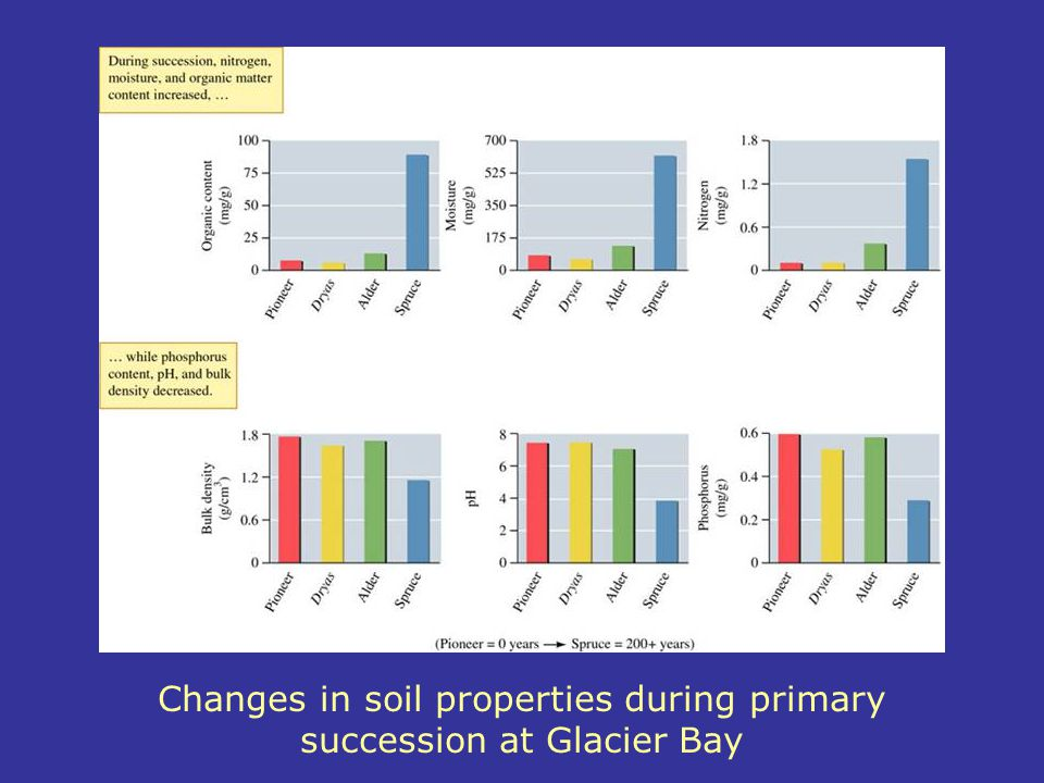 Changes in soil properties during primary succession at Glacier Bay