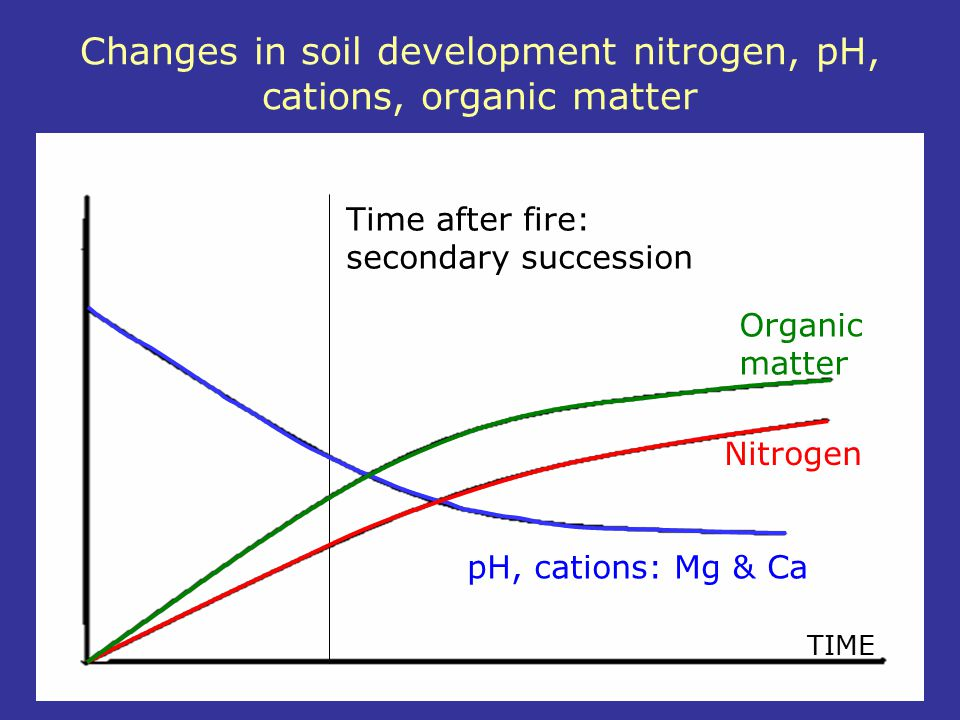 Changes in soil development nitrogen, pH, cations, organic matter