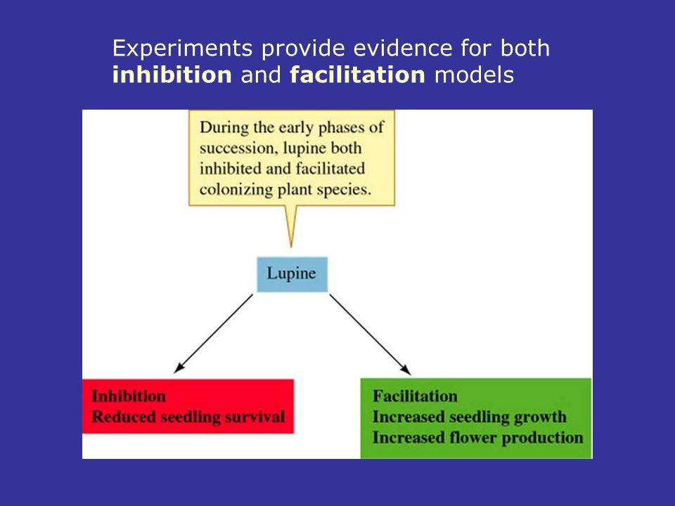 Experiments provide evidence for both inhibition and facilitation models