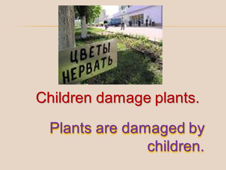 Children damage plants.