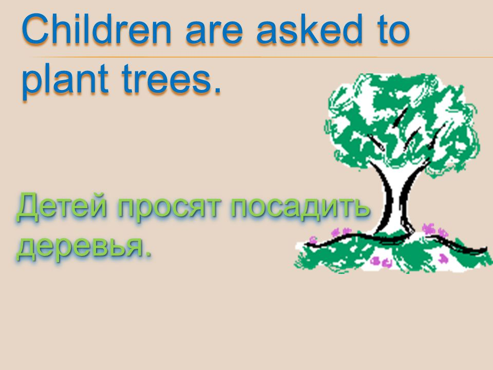 Children are asked to plant trees.