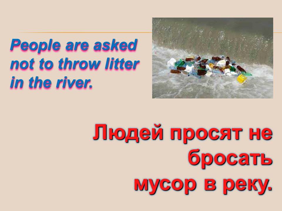 Людей просят не бросать мусор в реку.