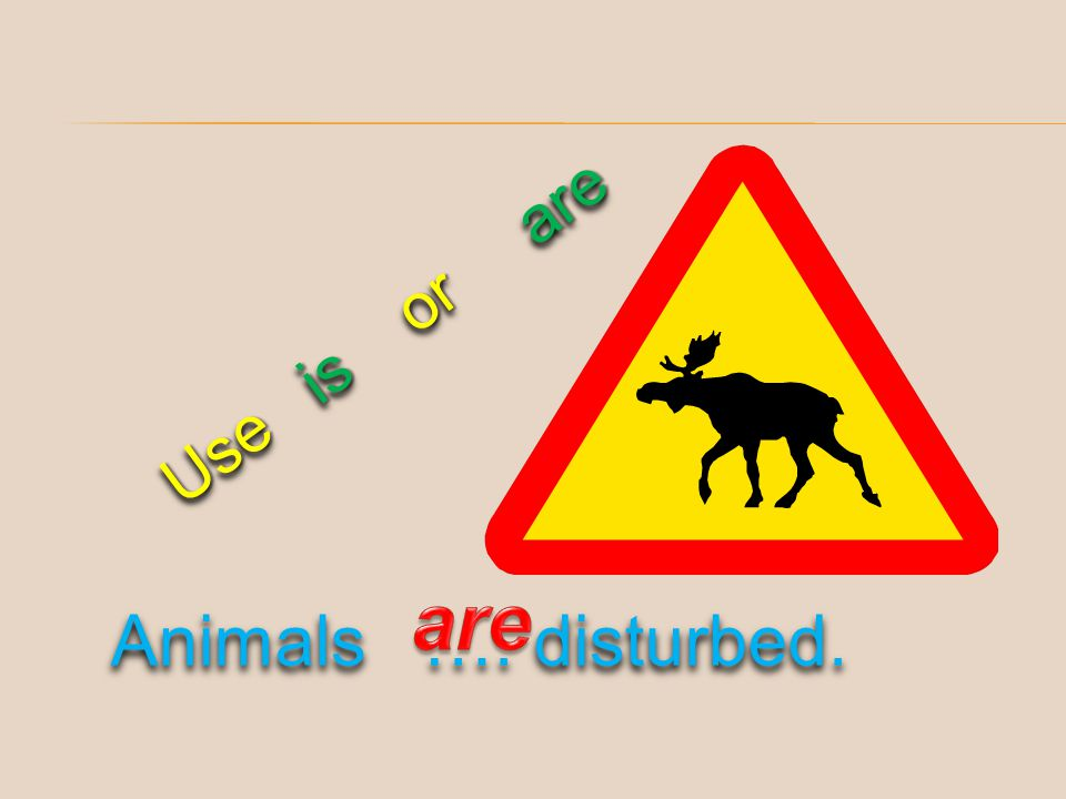Use is or are аre Animals …. disturbed.