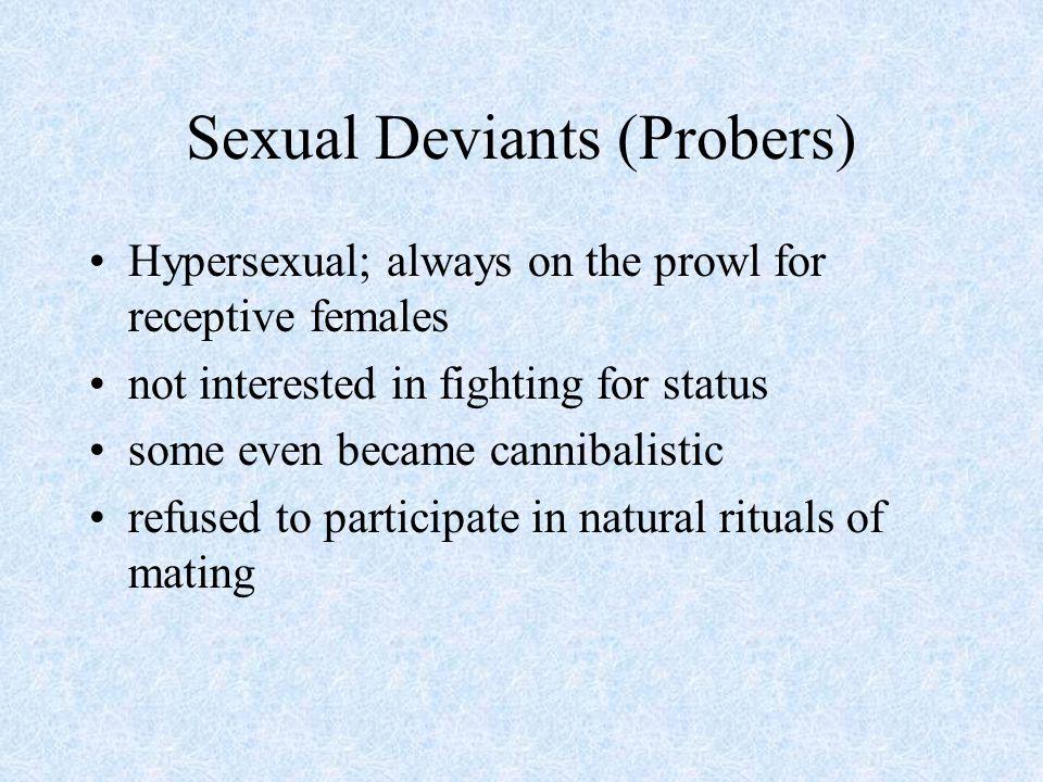 Sexual Deviants (Probers)