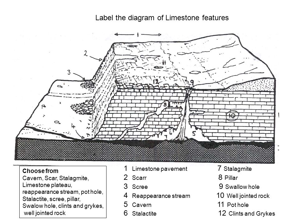 Label the diagram of Limestone features