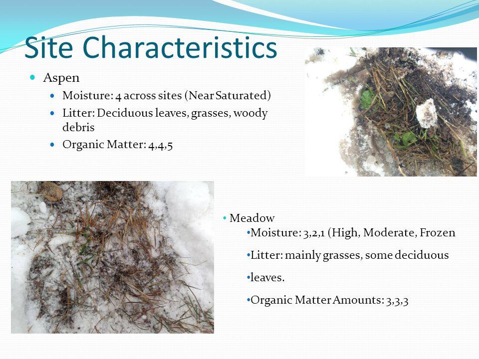 Site Characteristics Aspen Moisture: 4 across sites (Near Saturated)