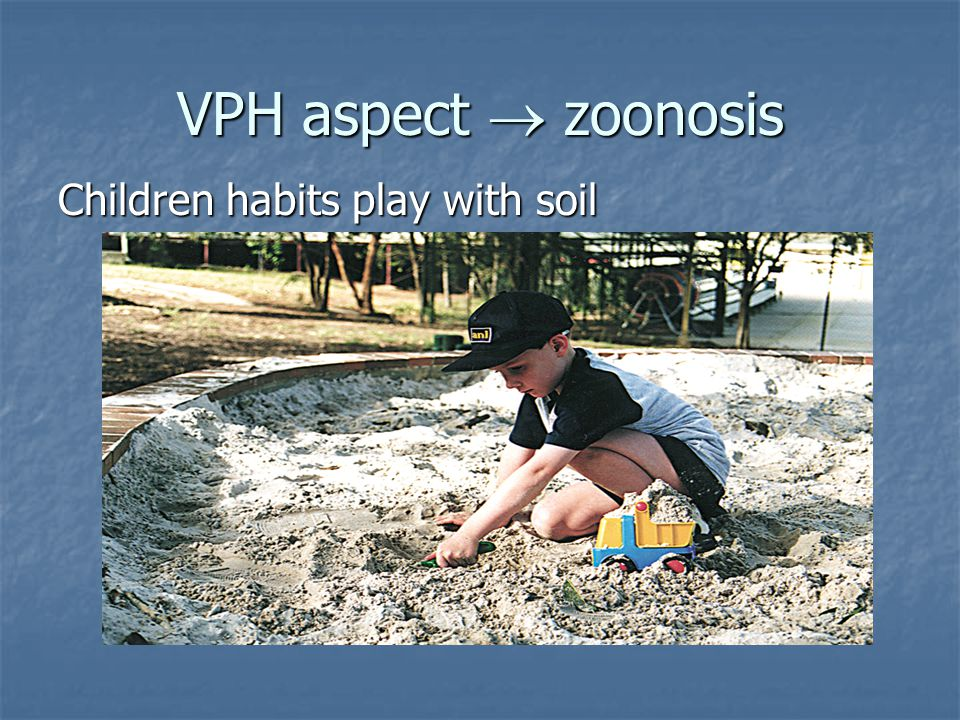 VPH aspect  zoonosis Children habits play with soil
