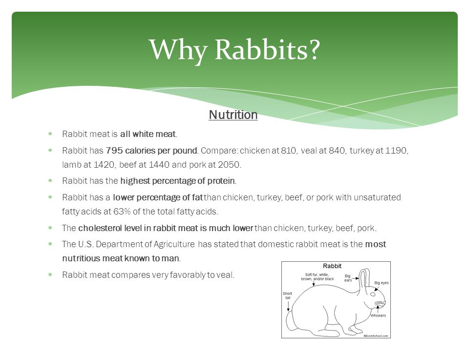 Why Rabbits Nutrition Rabbit meat is all white meat.
