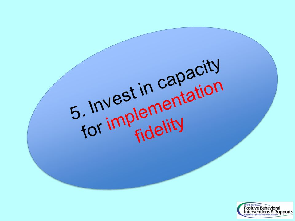 5. Invest in capacity for implementation fidelity